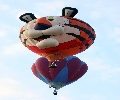 Tiger Balloon Afloat