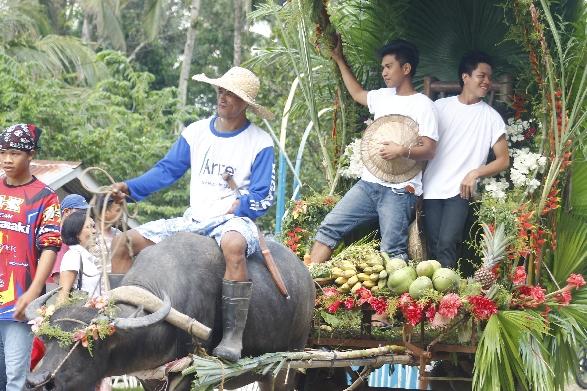 Karumata Karabaw - Barangay Fiesta