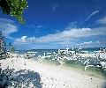Bohol Pamilacan Beach