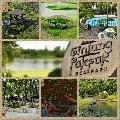 Gintong Pakpak Eco Park