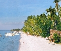 Alona Beach Panglao
